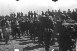 Солдаты вермахта сдаются в плен. 8 мая 1945 г.